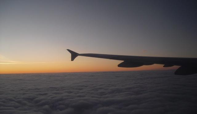 Flygbolag ställer in alla sina flygningar