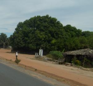 Foto: Fatou Touray, thegambia.nu