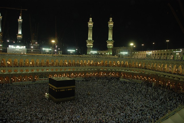 Minst 87 uppges döda i heliga staden Mekka efter att lyftkran rasat över moskén