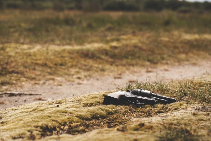 Danske könsstymparens fru hittad mördad