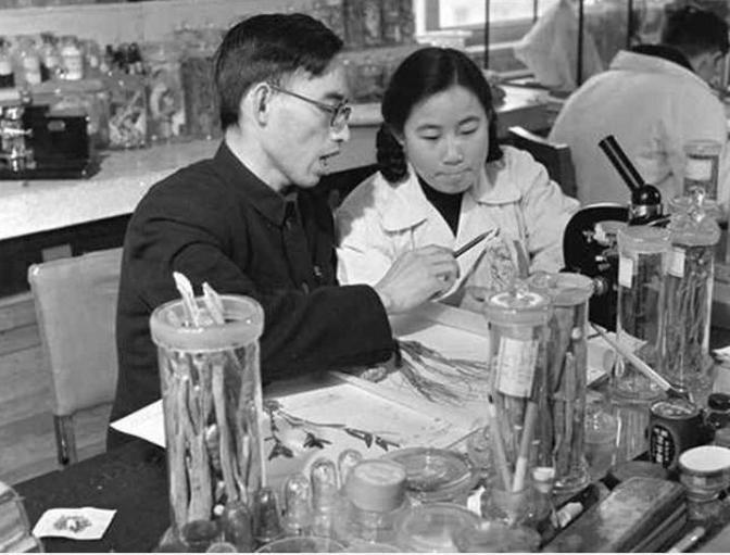 Positiv utveckling i kampen mot malaria resulterade i Nobelpris