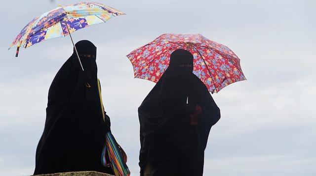 Senegal föreslår burkaförbud av säkerhetsskäl