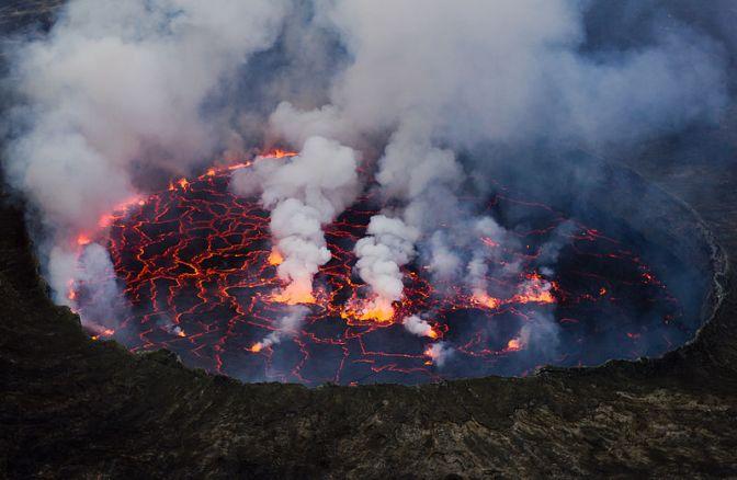 Skogs- och djurvårdarna i Virunga Nationalpark riskerar sina liv