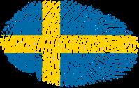 Vem är egentligen svensk? Foto: Pixabay