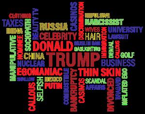 Donald Trump, USAs nästa president. Foto: Pixabay