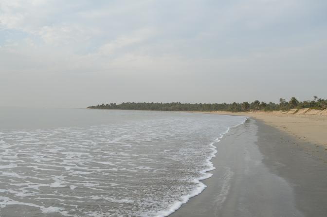 Stor oro för kinesiska företags överfiskning i Gambia och övriga Västafrika